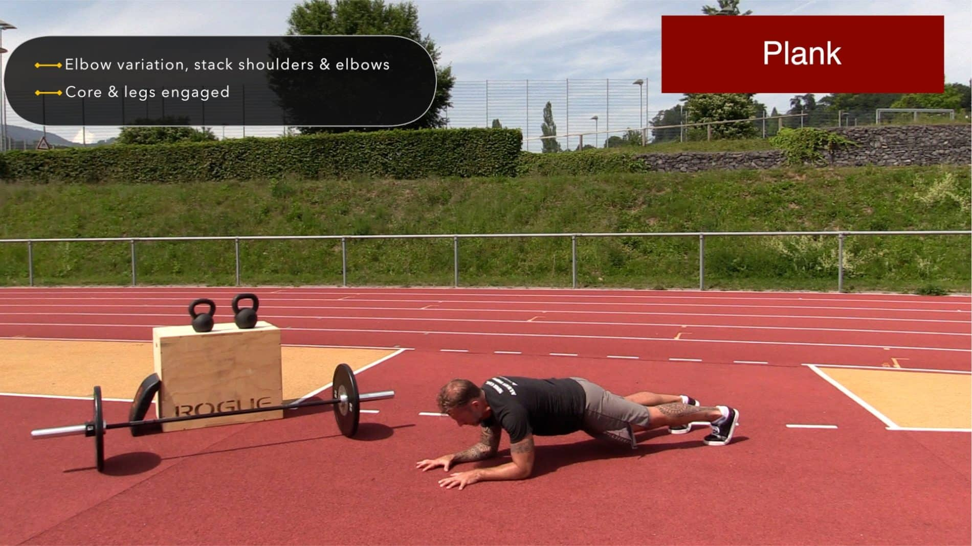 Plank Exercise: How To